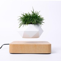Magnetic Levitating Planter pot Air Bonsai Levitation Module of Diy Magnetic Floating Plant For Floating Bonsai