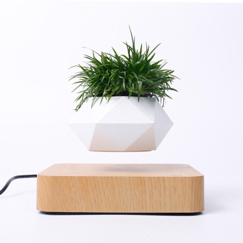 Pots de jardinière magnétiques pour bonsaï Module de lévitation magnétique de bricolage plante flottante magnétique pour bonsaï flottant