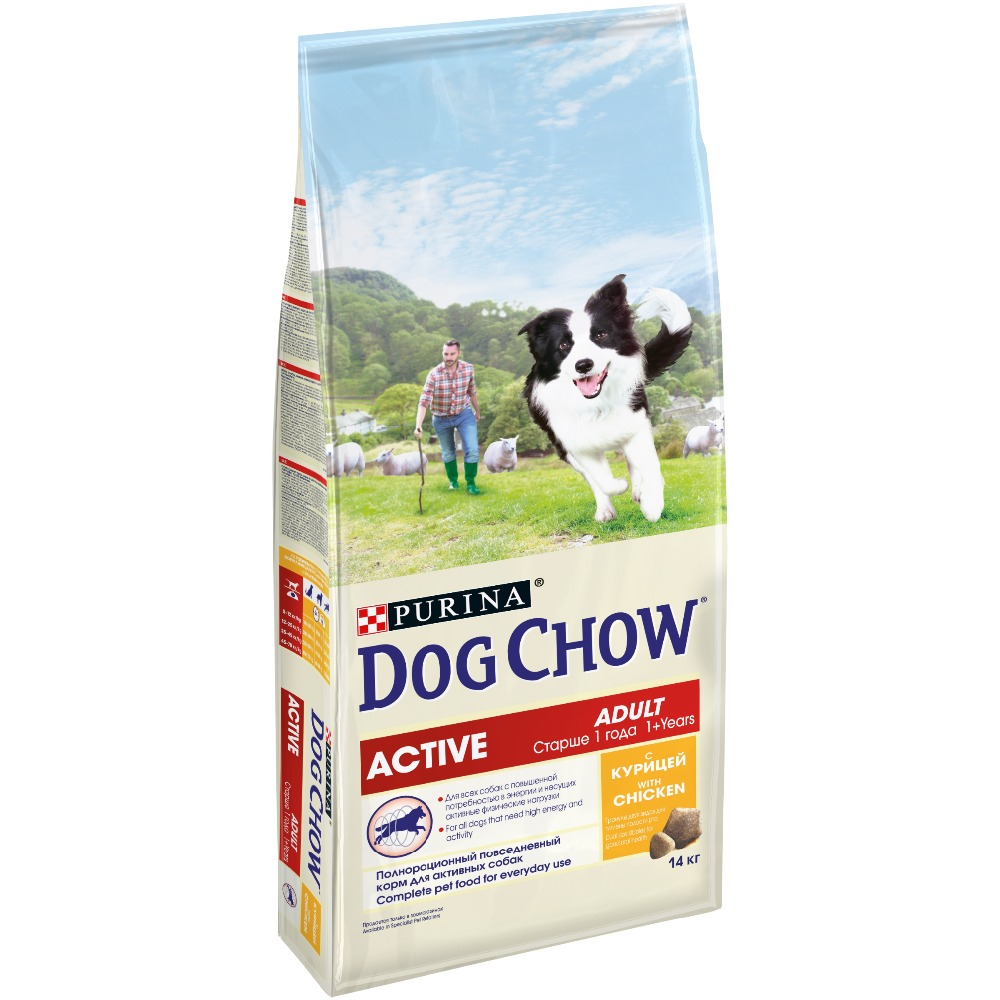 Dog Chow dry food for adult active dogs over 1 year old with chicken, 14 kg the 1 000 year old boy