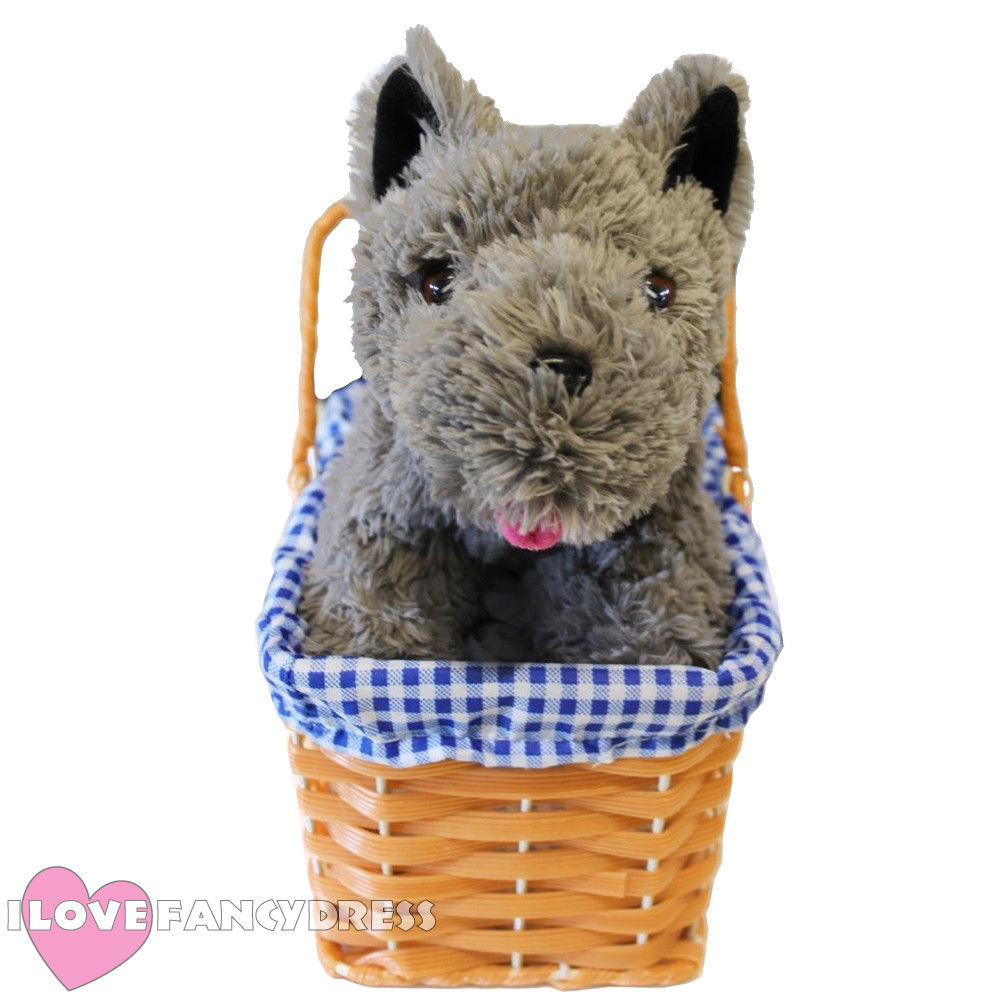 QUALITY TOTO DOG DOROTHY PICNIC PLASTIC BASKET GINGHAM EASTER WIZARD OF OZ WORLD BOOK DAY CHARACTER PROP FANCY DRESS ACCESSORY