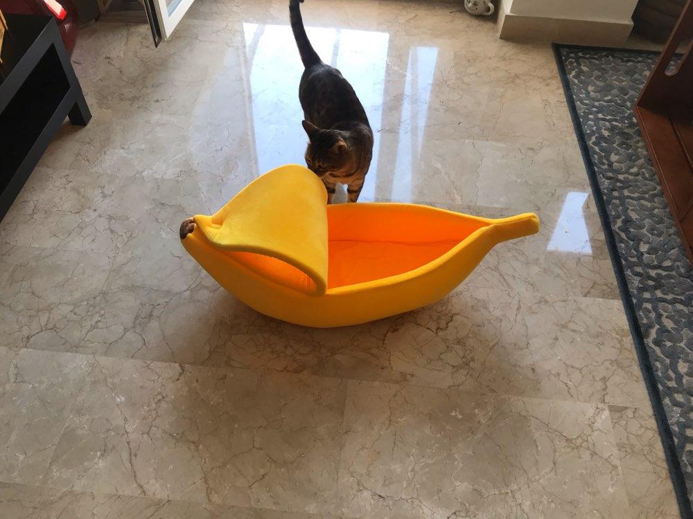 caminha de gato  Cama para pets  cama para gatos  cama para gato