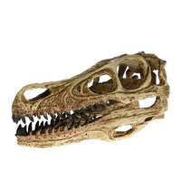 High Precision Teaching Model Dinosaur Skull Model Velociraptor Fossil Resin Skull Dinosaur Polystone Statue Skeleton Figurine