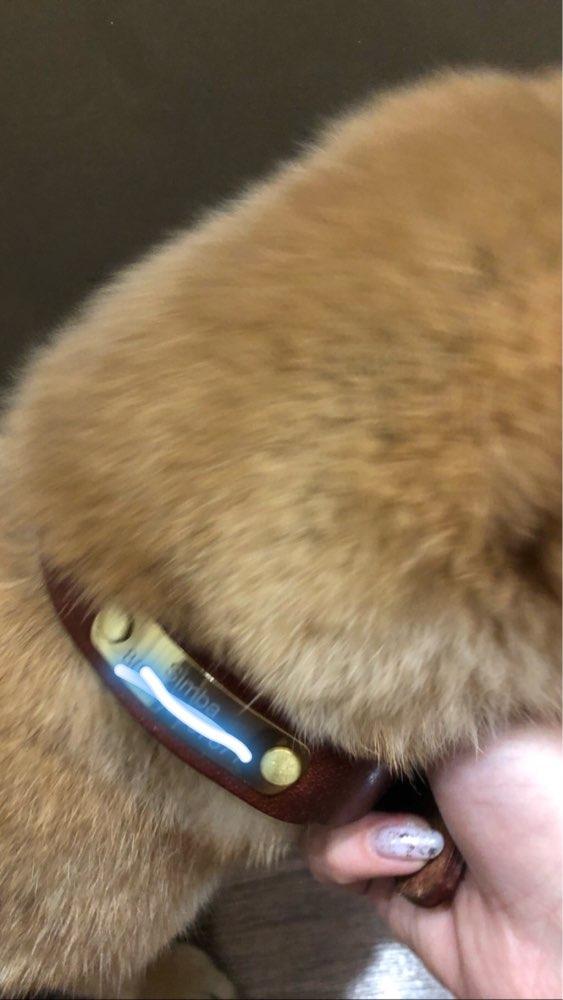 Nimeline kaelarihm Bosh photo review