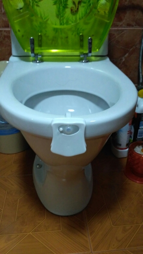 MOTION ACTIVATED TOILET LIGHT WITH 8 DIFFERENT COLORS photo review