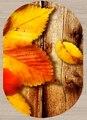 Anderes Braun Holz Gelb Solide Blätter Floral Natur 3d Print Non Slip Mikrofaser Wohnzimmer Moderne Oval Waschbar Bereich Teppich teppich-in Teppich aus Heim und Garten bei