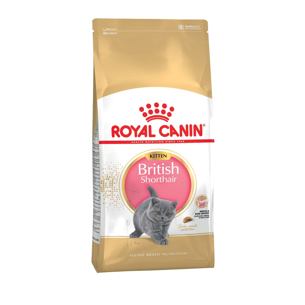 Kittens food Royal Canin British Shorthair Kitten, 10 kg цена и фото
