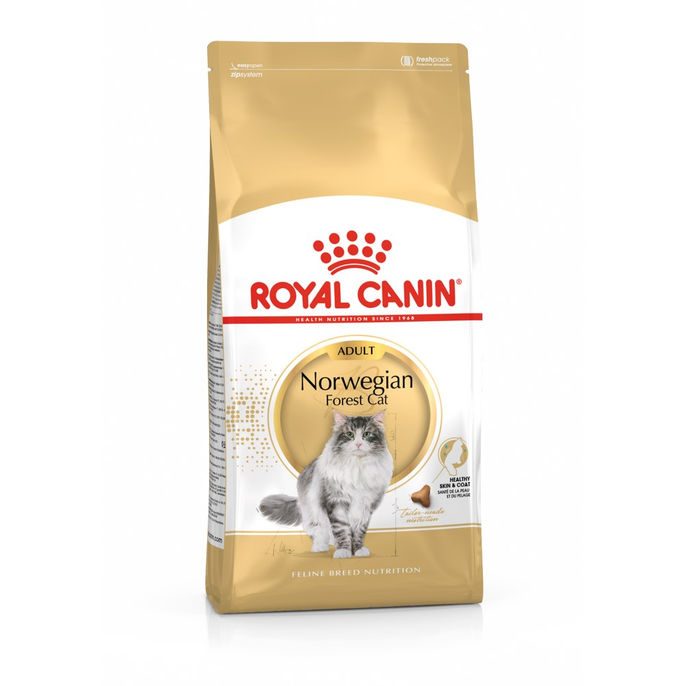 Cat Food Royal Canin Norwegian Forest Adult, 2 kg forest elf cat tapestry wall art decor