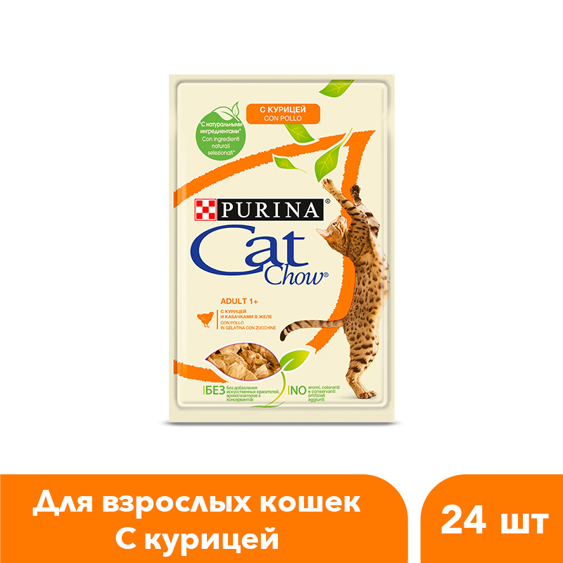 Wet feed Cat Chow for adult cats with chicken and zucchini, Pouch, 24x85 g. женское термо белье 2015031304