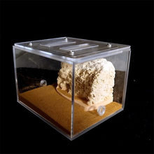 Bionic Acrylic & Gypsum Ant Nest Housing Ant Farm Formicarium For Ant Colony(China)