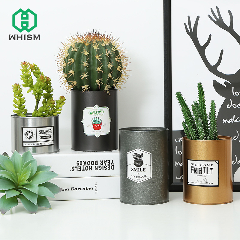 225 & US $2.98 30% OFF WHISM Tinplate Metal Flower Pot Succulent Plant Pot Creative Painting Iron Storage Container Decoration Nursery Pot Planter-in Flower ...