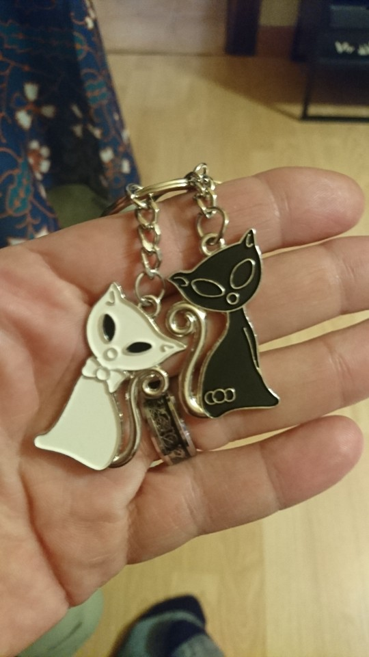 ISKYBOB 2019 Hot Sale Cute Couple Cat Keychain for Lovers Alloy Fashion Enamel Jewelry Ring For Bag Ornament Accessorie photo review