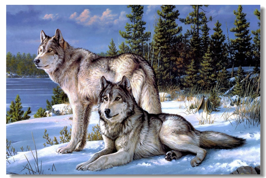 Custom Canvas Wall Painting Snow Wolves Poster Wolf Wall Sticker Office Decoration Wild Animal Wallpaper Study Room Mural #0151#