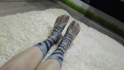 Пол:: Женщины; женский носок; Материал:: Хлопка; принтер;