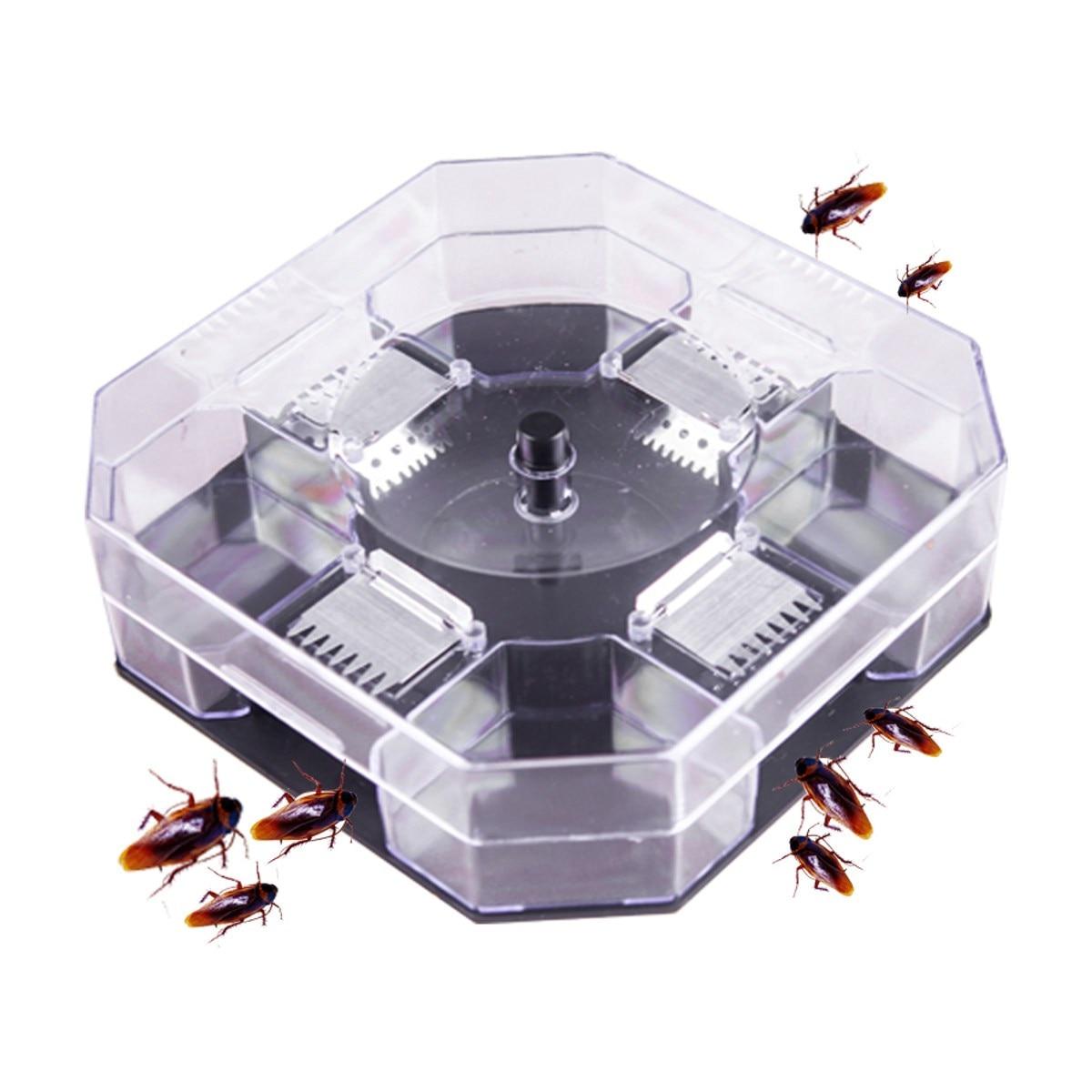 Roach için kara yemi. Roach yakalamak özellikleri