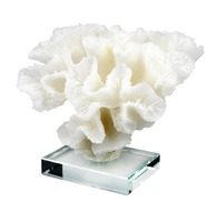 White Coral Flower Statue on Transparent Glass Base Home Decor Stylish Decorative Accent