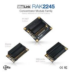 Módulo concentrador RAK2245 WisLink familia/sello, 96 tablas y factor de forma Raspberry PI, soporta 8 canales, versión UART