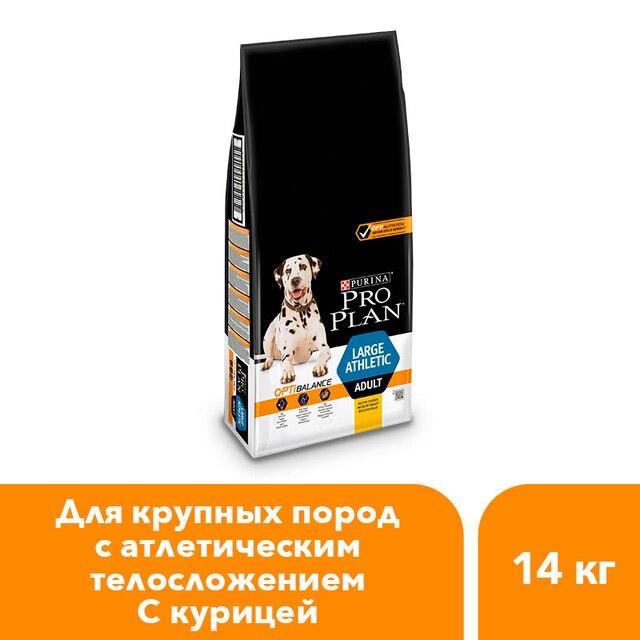 Pro Plan сухой корм для собак крупных пород с атлетическим телосложением, с курицей, 14 кг.