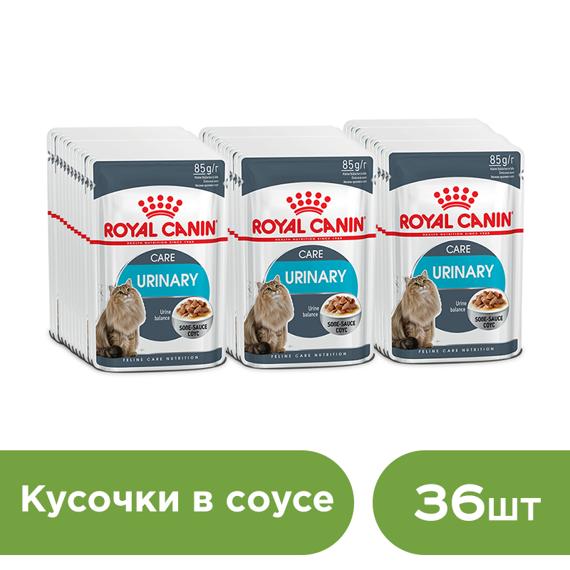 Фото - Cat wet food Royal Canin Urinary Care slices in sauce (0.085 kg*36 pieces) urinary schistosomiasis in nigeria