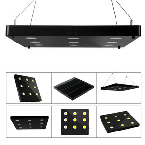 Image 5 - Ultra Thin COB LED Plant Grow Light Full Spectrum BlackSun S4 S6 S9 LED Panel Lamp for Indoor Hydroponic Plants All Growth Stage