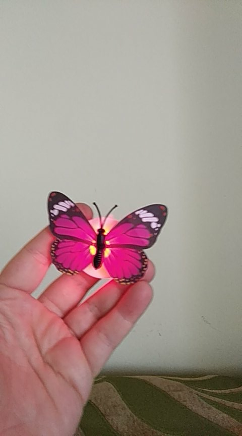 Romantic Magic LED Butterfly (10Pcs) photo review