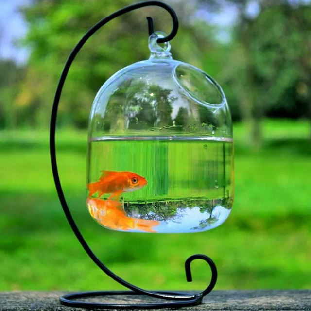 Clear Hanging Glass Aquarium Fishbowl Fish Tank Flower Plant Vase Handmade Decor Hanging Bowl Home Wall Decor without Hanger 1