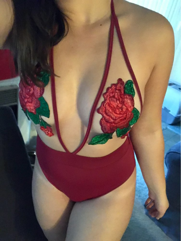 Sexy Rose Embroidery Overalls See Through Beach Bodysuits Women stretch Jumpsuit Halter Rompers 2018 Summer Swimsuit red wine
