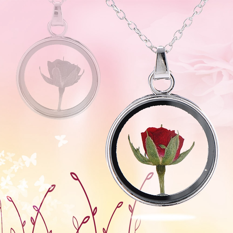 Rose Round Dried Flower Glass Necklace Hot Sell Color