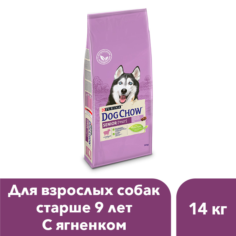 Dog Chow dry food for adult dogs over 9 years old with a lamb, 14 kg dog chow dry food for adult active dogs over 1 year old with chicken 14 kg
