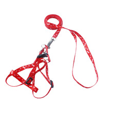 Dog leash nylon