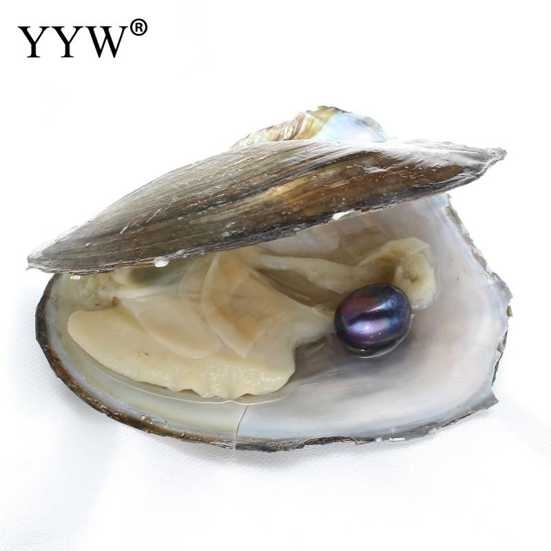 YYW 9-10mm Black Rice Pearl Loose Beads inside Vacuum Packed Natural Freshwater Cultured Love Wish Pearl Mussel Shell Oyster