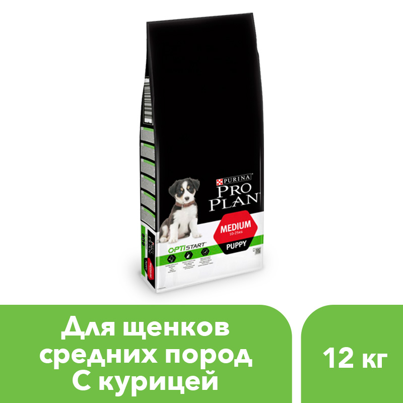 Dry food Pro Plan for puppies of average breeds, with chicken, 12 kg. набор кистей художественных степная лисица 6шт nn 1 3 5 7 9 11