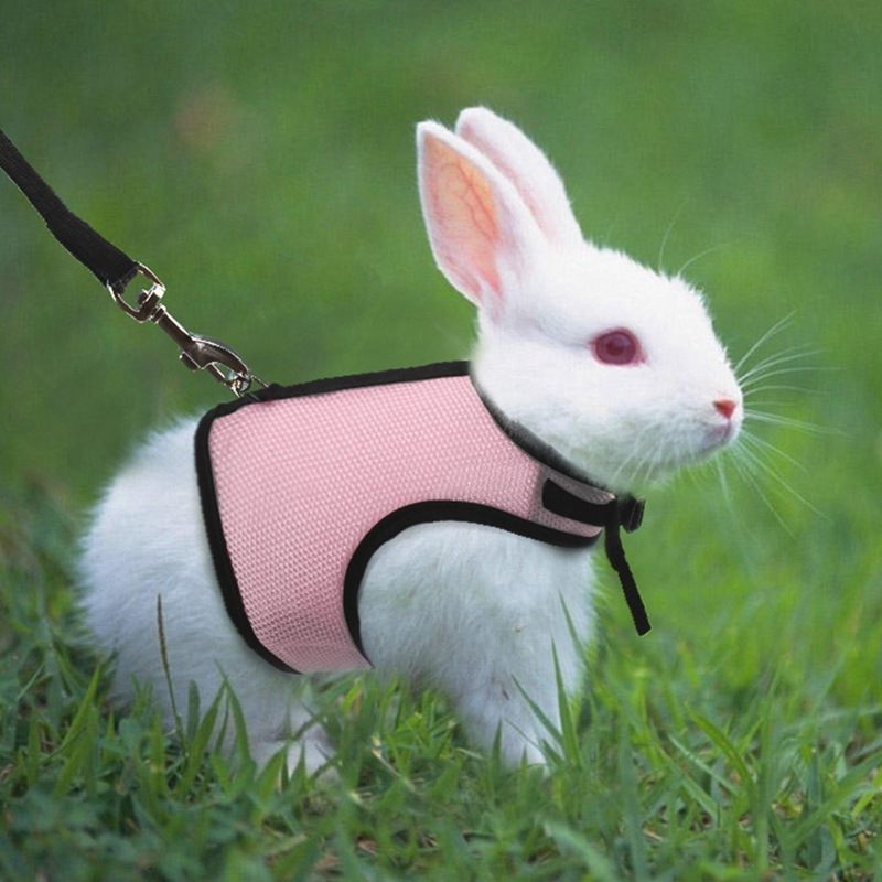 Pet Rat Leash Harness Rabbit Hamster Leash Hamster Clothes Guinea Pig Clothes Adjustable Rope Collar Dropshipping Pet Supplies