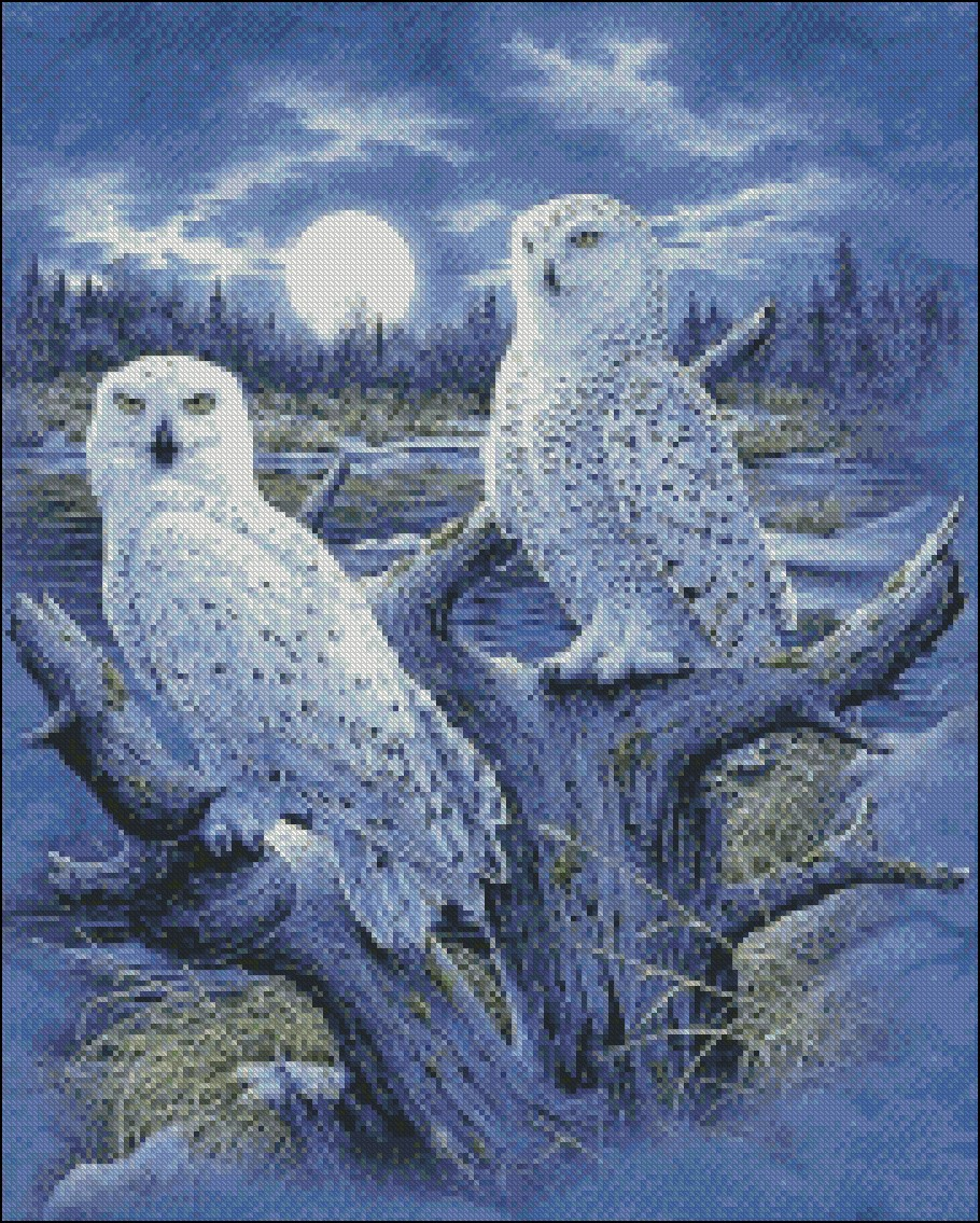 Image 2 - Embroidery Counted Cross Stitch Kits Needlework   Crafts 14 ct DMC DIY Arts Handmade Decor   Snowy OwlsPackage
