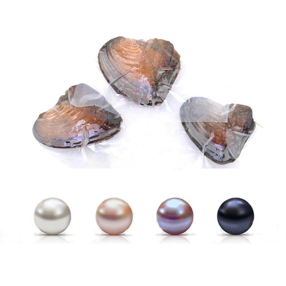 Huître perlée d'eau douce cultivée amour souhait huître perlée avec perles rondes de 7-8mm à l'intérieur (4 pièces/lot)