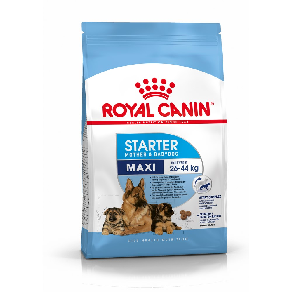 Puppy Food Royal Canin Maxi Starter, 15 kg сухой корм royal canin maxi starter mother