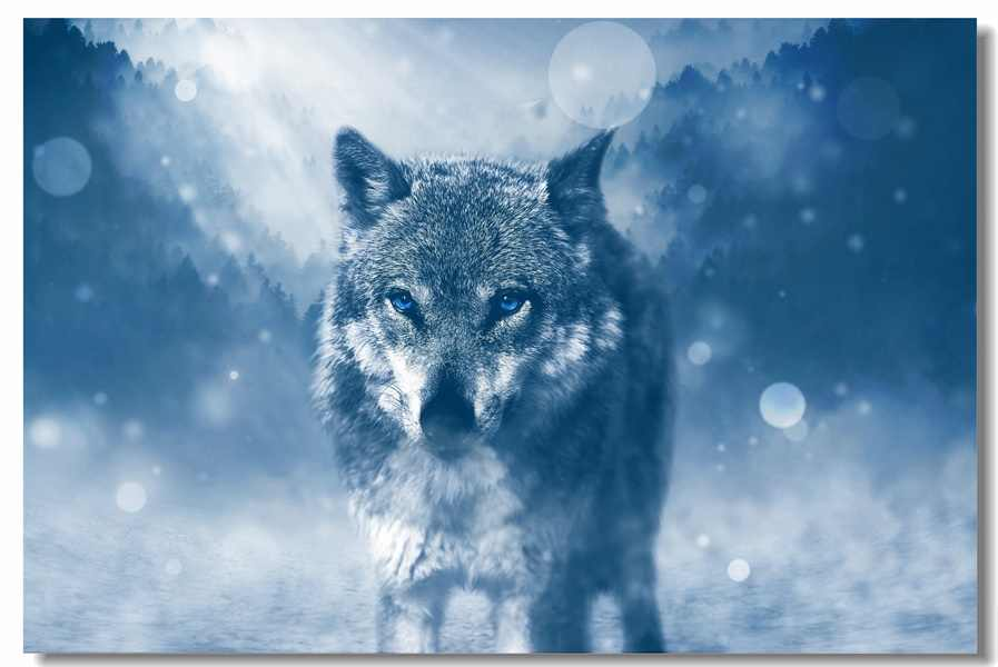 Custom Canvas Wall Murals Cool Wolf Wall Stickers Wolves Poster Wild Animal Wallpaper Office Decor Cafe Bedroom Paintings #0153#