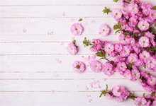 Laeacco Spring Flowers Wooden Boards Baby Children Photography Backgrounds Customized Photographic Backdrops For Photo Studio