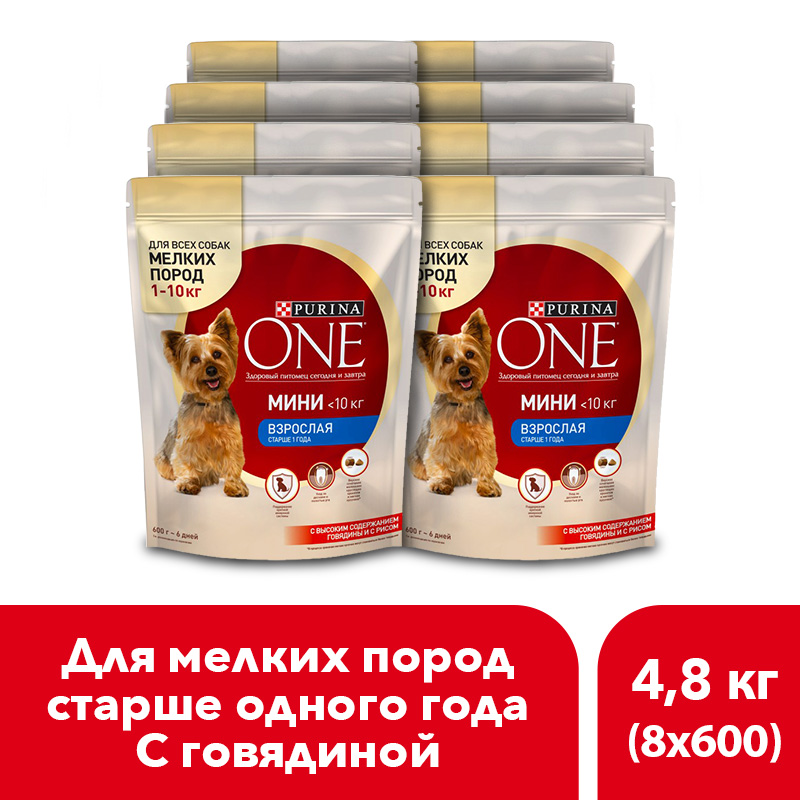 Dry dog food of small breeds Purina One Mini Adult, with beef and rice, 4.8 kg.