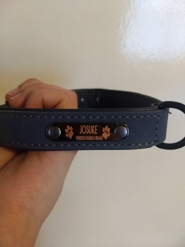 Personalized Dog Collar and Leash Leather Padded Customized Engraved Dogs Collars Lead Rope Set Bulldog Pitbull Drop Shipping