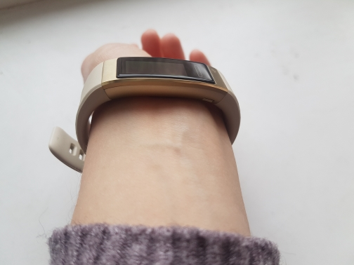 Умный браслет HUAWEI Band 3 Pro TER-B19