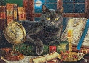 Image 2 - Thêu Tính Cross Stitch Bộ Dụng Cụ May Vá Thủ Công Mỹ Nghệ 14 ct DMC Màu DIY Nghệ Thuật Handmade Trang Trí Nội Thất Black Cat của dưới ánh nến