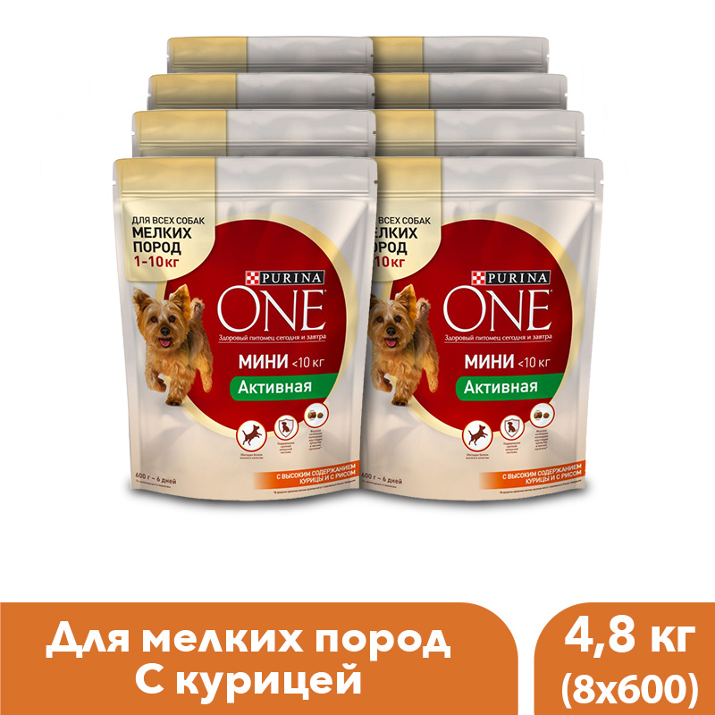 Dry dog food of small breeds Purina One Mini Active, with chicken and rice, 4.8 kg.