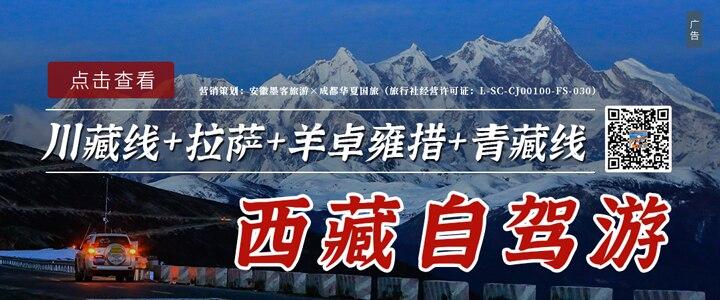 合肥自驾西藏:拉萨、林芝桃花节