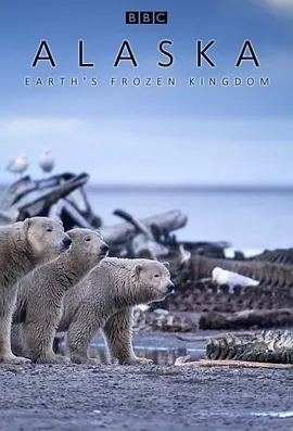 阿拉斯加:地球上的冰凍王國