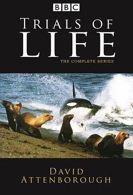 生命之源1990
