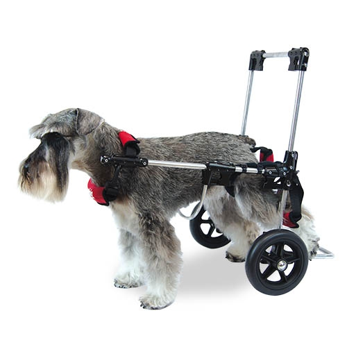 Wheelchair Canis Mobile Wheelchair MIDDLE|Chaise Lounge| |  - title=