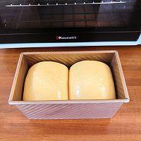 用小米南瓜粥做吐司 | 二次发酵的做法图解9