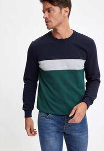 DeFacto Man Sweat Shirt-R3817AZ20AU