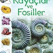 Nature Rocks and Fossils Struan Reid 437370210