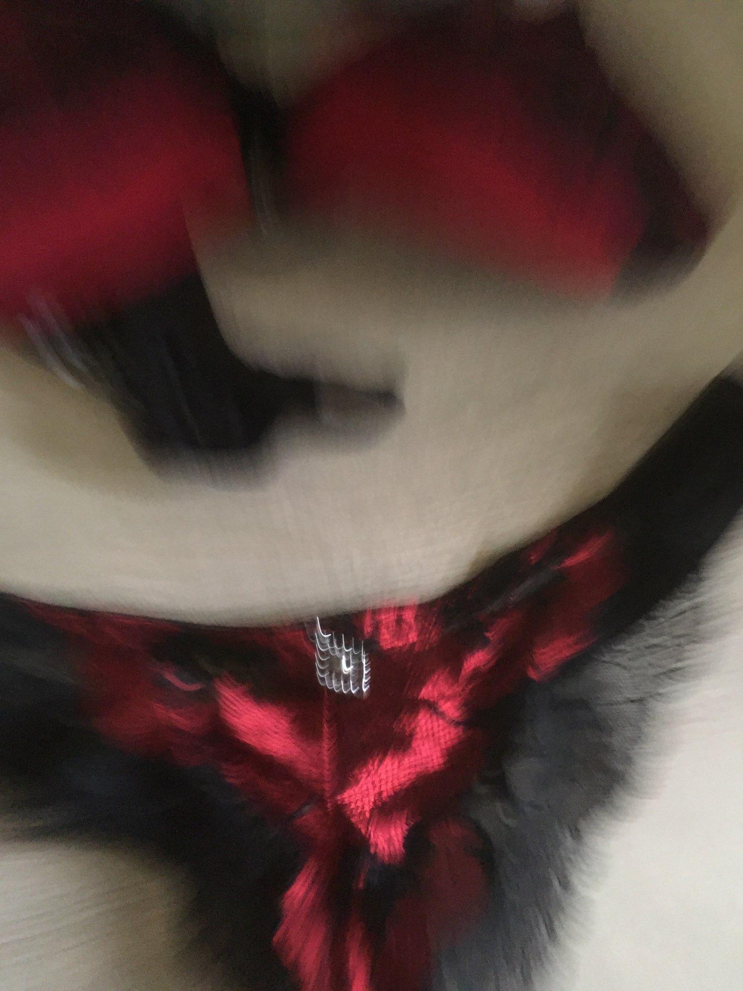 DKERT ABC 75 80 85 90 95 Thong Bra Set Push Up Lace Women Underwear Panty Set Set Hollow Out G String Embroidered Bra Brief Sets underwear panties set thong bra setbra set - AliExpress
